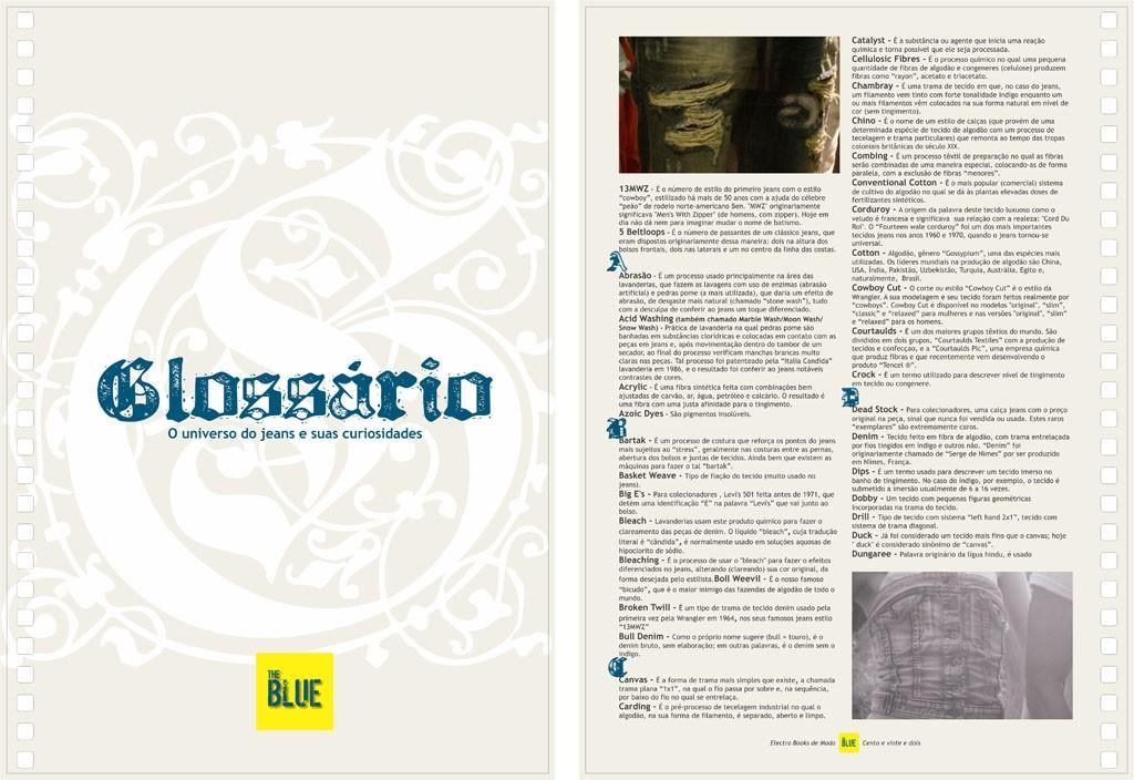 The Blue #8-Glossario+Glossario01